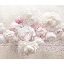 Бело-розовые цветы лофт