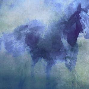Лошадь в дымке