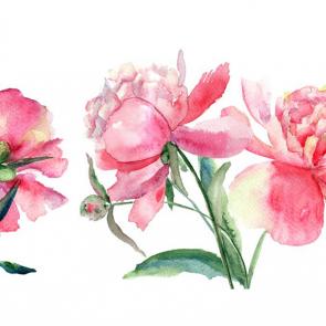 Акварельные розовые цветы