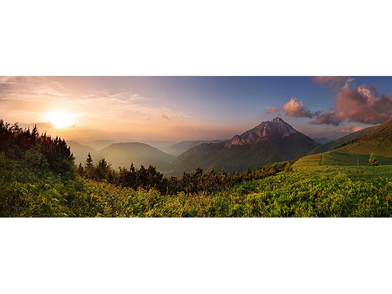 Альпийская свежесть 2001