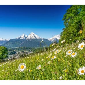 Альпы 07593