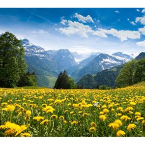 Альпы 12610