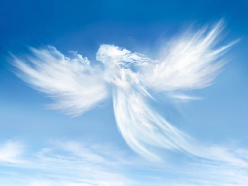 Ангелы 13009 6751