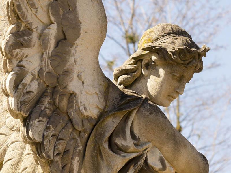 Ангелы 14126 6754