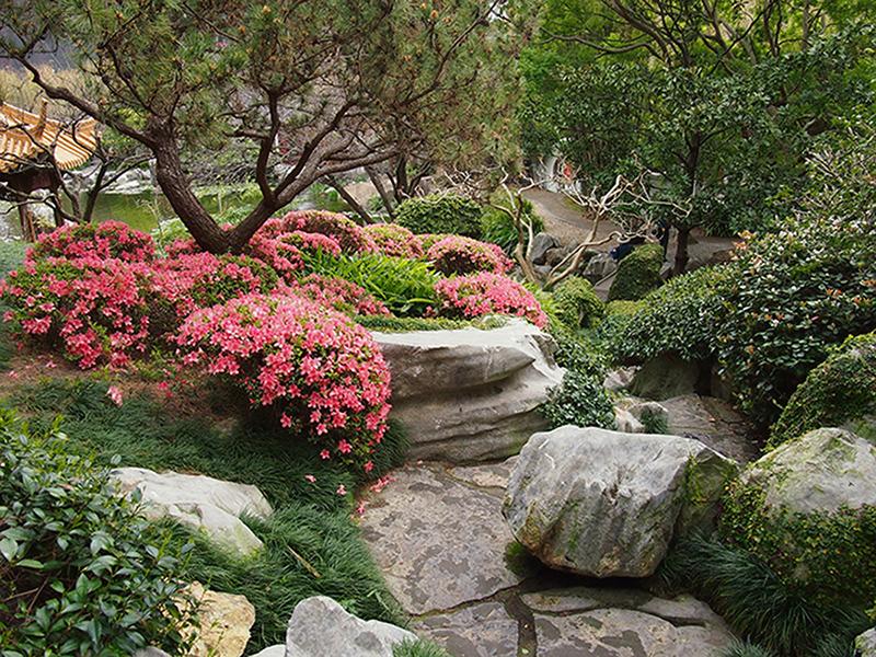 Азиатский сад 2005