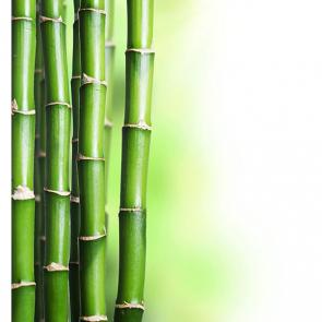 Бамбук 5121
