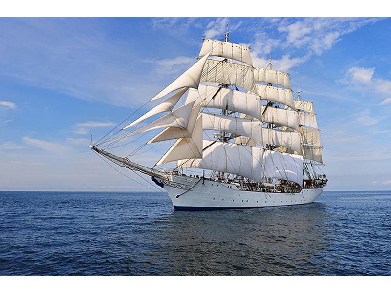Белые паруса 2350