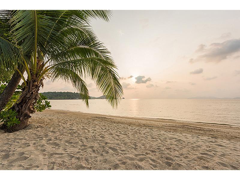 Гавайский пляж 2524