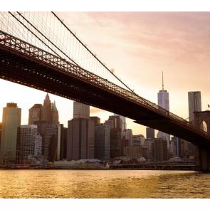 Бруклинский мост 5985
