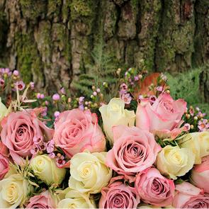 Букет роз 3