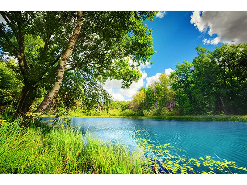 Чистое озеро 1029