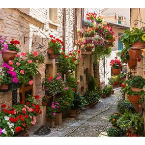 Цветочная улица