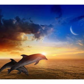 Дельфины 5575