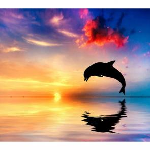 Дельфины 5576