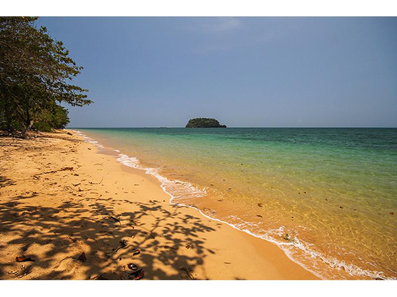 Дикий пляж 2564