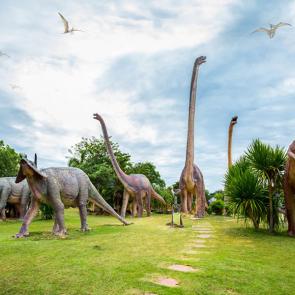 Динозавры 5589