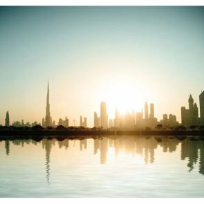 Дубай 6044