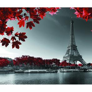 Эйфелева башня и красными листьями