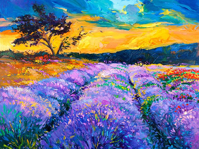 Фиолетовое поле 1068