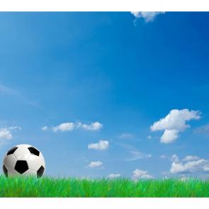 Футбол 13169