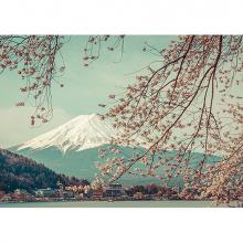 Гора Фудзи весной