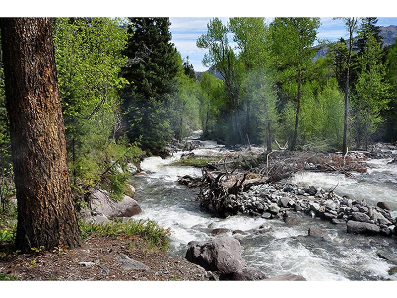 Горная река 1804