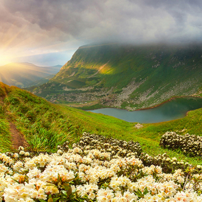 Горное озеро с цветами