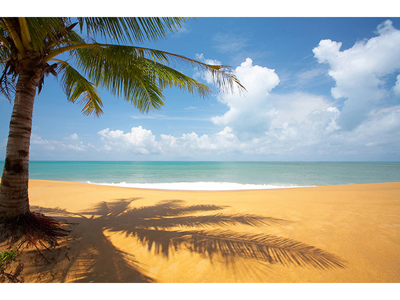 Песчаный пляж 2525