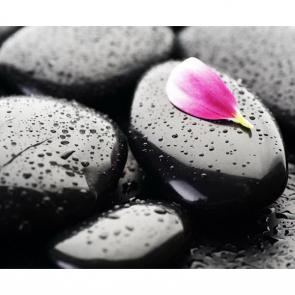 Камни 5279