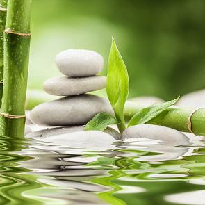Камни и бамбук
