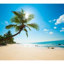 Кокосовый пляж