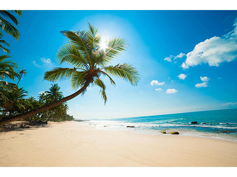 Кокосовый пляж 2527