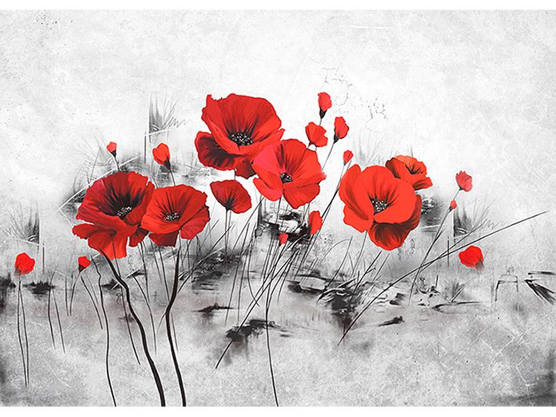 Красные маки 3д 1616