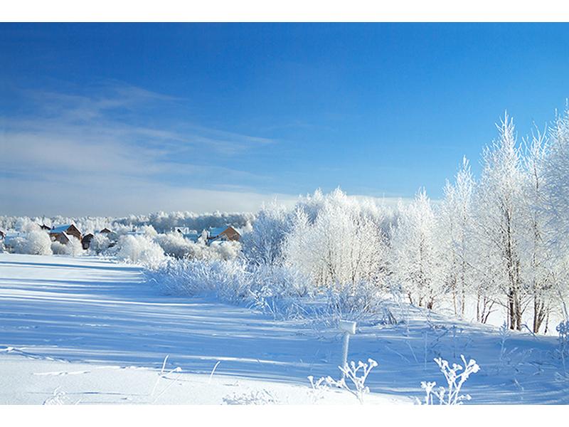 Красота зимы 1613