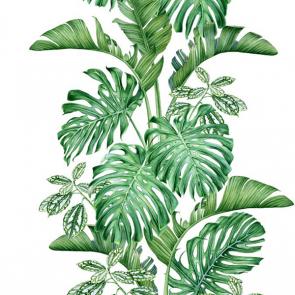 Листья 4981