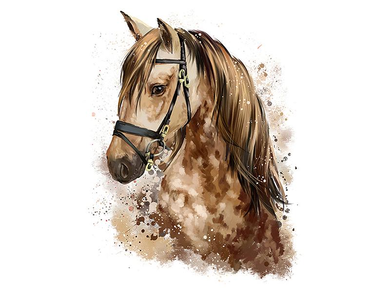 Лошадь акварелью 2423