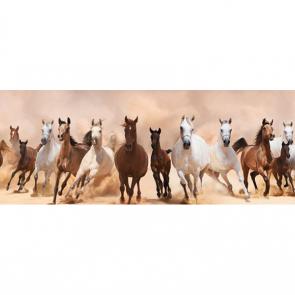 Лошади 5682
