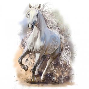 Лошади 5693