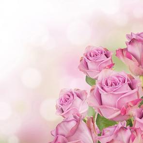 Лучезарные розы