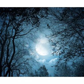 Луна 5315