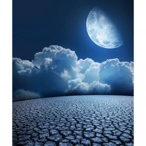Луна 5317