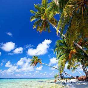 Малдивы 01562