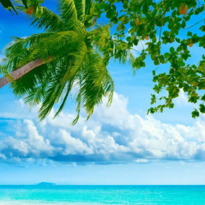 Малдивы 01564