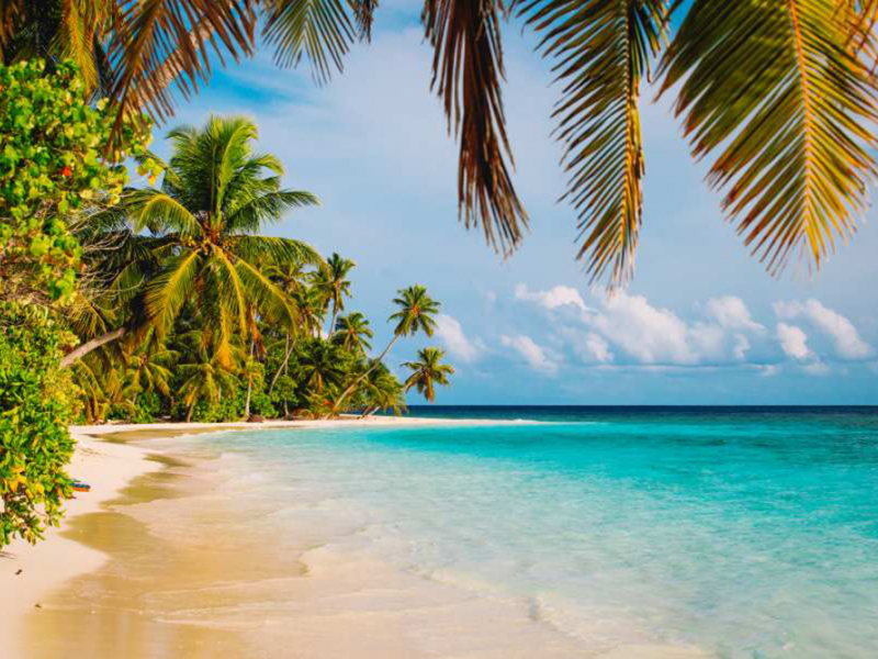 Малдивы 16436 7051
