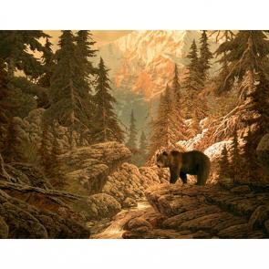 Медведи 5702