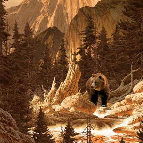 Медведи 5704
