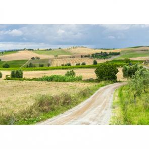 Монтальчино Италия