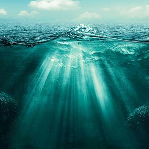 Морское дно