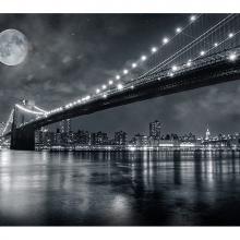 Мост в полнолуние