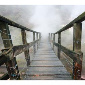 Мосты 5330